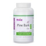 Zenith Nutrition Pine Bark Ext,  300 Veggie Capsule(s)