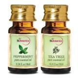 St.Botanica Pure Essential Oil,  20 Ml  Tea Tree + Peppermint