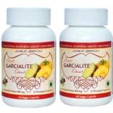 Ashwat Ayurveda Pure Garcialite Extract (Pack Of 2),  60 Veggie Capsule(s)
