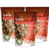 GAIA Sport Trail Mix (Pack of 3),  100 g  Unflavoured