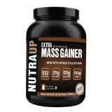 Nutraup Mass Gainer,  Rich Chocolate  2 Lb