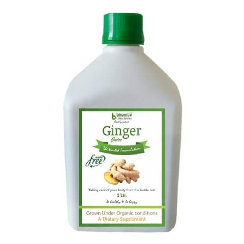 Bhumija Ginger Juice,  Sugar Free  1 L