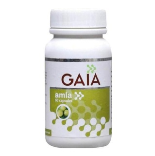 GAIA Amla,  60 capsules